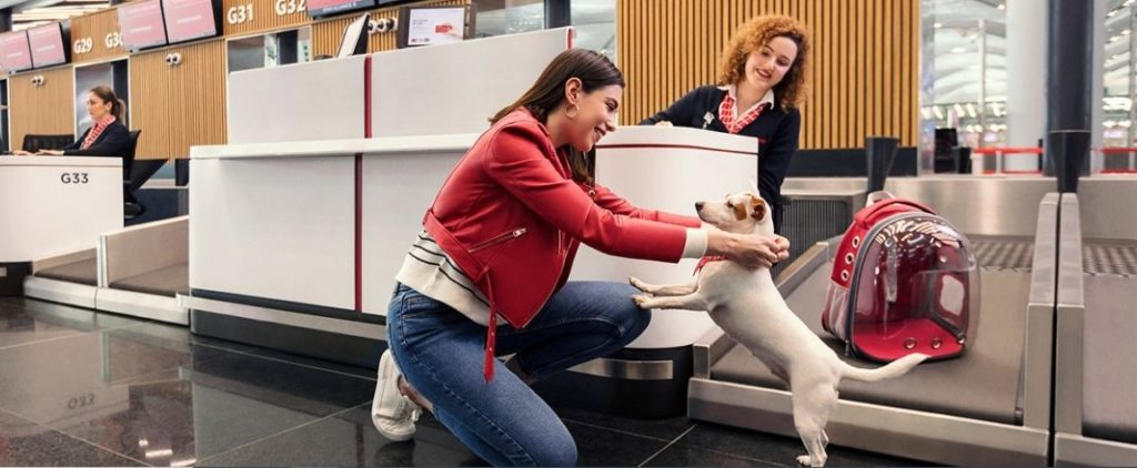 Turkish-Airlines-Pet-Policy